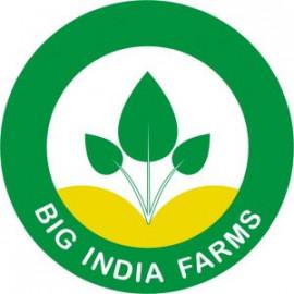 bigindiafarms.com